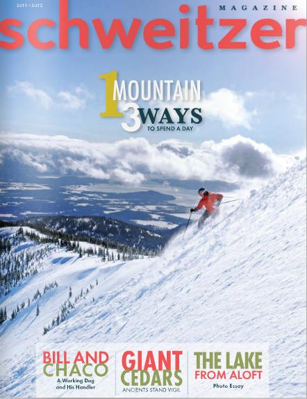 SchweitzerMagazine2011